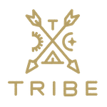 Tribe Interactive