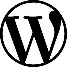 wordpresstheme24.com
